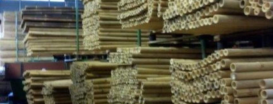 Bambus Lager der Bambusbasis