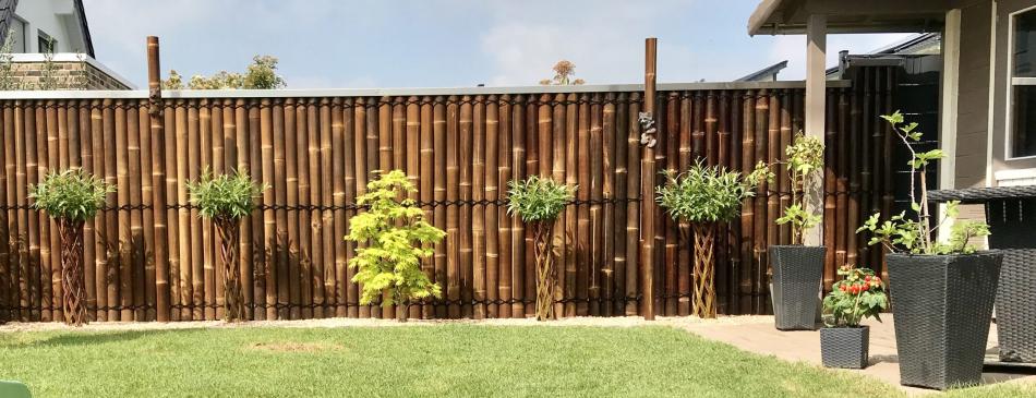 Bambus-Rollzaun dunkel